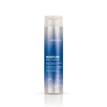 Shampoo MOISTURE Recovery 300ml